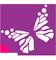 terapiaperhonen-logo-60